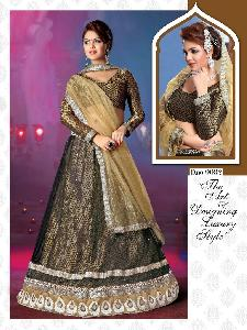 NET WITH BANARASI BROCADE INNER LENGHA