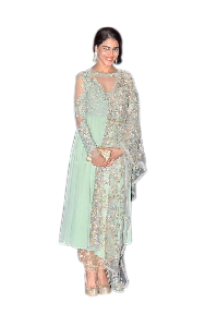 Sea Green Coloured Long Suit With Emboridered Dupatta